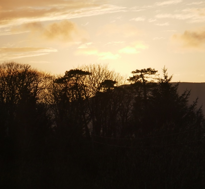 bere_sunset