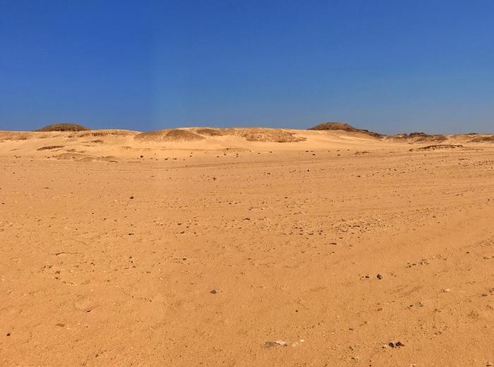 desert01_week1